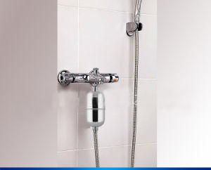 Skin Care Shower with Combined Carbon Filter pictures & photos
