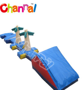 New Design Inflatable Water Obstacle Course pictures & photos