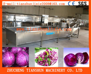 High Pressure Automatic Bubble Washer, Fruit and Vegetable Washer pictures & photos