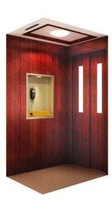 Home Elevator / House Elevator / Villa Elevator (V3)