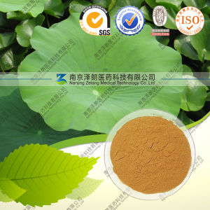 High Quality Natural Lotus Leaf Extract pictures & photos