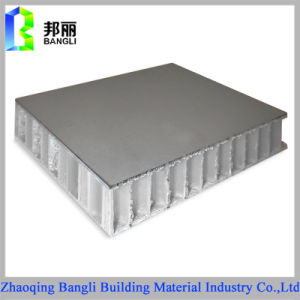 Lightweight and Durable Aluminum Cladding Panel Honeycomb Sandwich Composite Panels pictures & photos