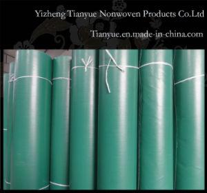 500d PVC Tarpaulin Transparent pictures & photos