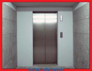 Hairline Stainless Steel Goods Lift Cargo Elevator Hot Sale pictures & photos