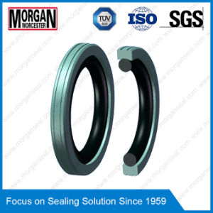 Tg4/M16 Profile PTFE High Pressure Radial Shaft Seal Ring pictures & photos