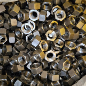 Super Stainless Steel 904L 1.4539 Hex Head Bolt pictures & photos