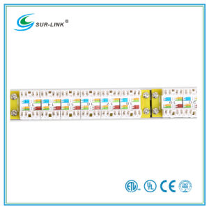 CAT6A UTP Patch Panel 0.5u 24 Port pictures & photos