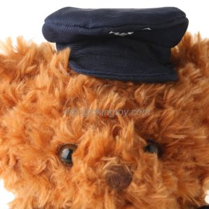 New Design Stuffed Plush Teddy Bear with Hat pictures & photos