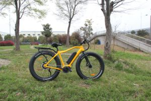 26′′ 4.0 Bafun MID Drive Motor High Speed Fat Tire 350W Mountain Electric Bike/Bicycle pictures & photos
