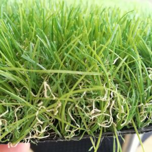 Landscape Decoration 4 Colours Synthetic Artificial Grass for Garden or Home or Public pictures & photos