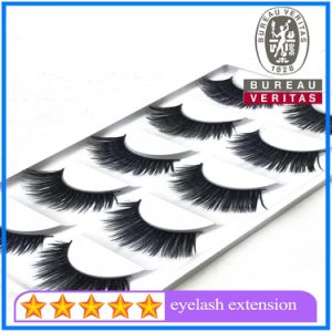 Natural Makeup False Fake Eyelash Eye Lashes pictures & photos