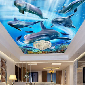 Wholesale High Quality Digital Printing PVC Stretch Ceiling Film pictures & photos