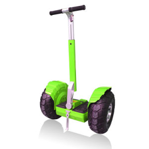 19inch Vacuum Tire Outdoor Two Wheel Electric Beach Motor Scooter pictures & photos