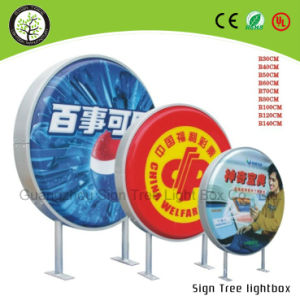Double Side Vacuum Forming Round Light Box pictures & photos