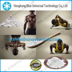 Natural Build Muscles Anabolic Steroid Testosterone Undecanoate CAS 5949-44-0 pictures & photos