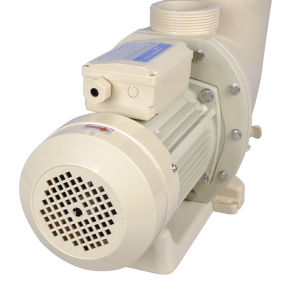 380V Three Phases High Pressure Pool Water Pump for Swimming Pool pictures & photos