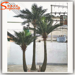 Wholesale Artificial Palm Tree Made in China for Garden Home Decoration pictures & photos