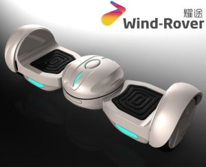 Newest I-Rover Mini Hoverboard Electric Skateboard pictures & photos
