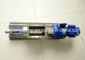 Xinglong Food Grade Single Screw Pump pictures & photos