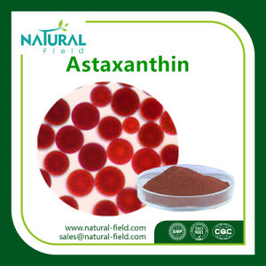 Astaxanthin Powder CAS: 472-61-7 pictures & photos
