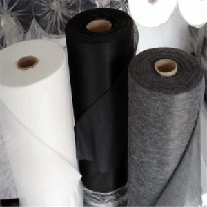 Thermal Bonded Double Dotted Polyester Nonwoven Fusing Interlining Fabric pictures & photos