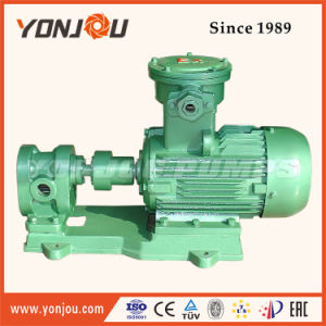 Electric Hydraulic Gear Oil Pump Transfer Lube Oil, Waste Oil, Olive Oil, Crude Oil, Diesel Oil, Fuel Oil pictures & photos