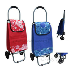 Cheaper and Portable of Foldable Mini Shopping Cart Manufacturer pictures & photos