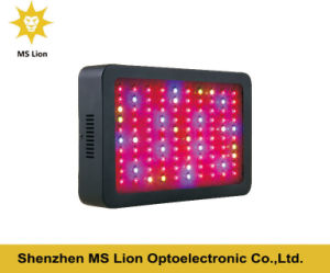 Wholesale High Power 300W LED Grow Light Panel pictures & photos