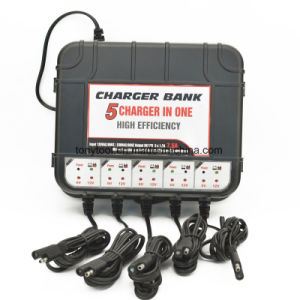12V Smart 5-Bank Charger pictures & photos