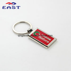 Customized Logo Painting Metal Key Ring pictures & photos