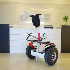 China New Product Golf Cart Self Balancing Electric Golf Scooter pictures & photos