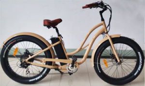 750W High Power Fat Tyre E Bike for Ladies pictures & photos