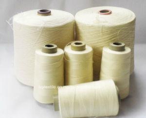 Ring Spun 100% Polyester Core Spun Yarn pictures & photos
