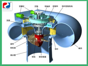 Pelton Hydro Turbine Water Generator pictures & photos