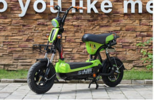 Big Load Capacity Electric Bicycle pictures & photos