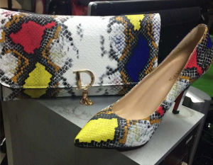 New Collection Snake Pattern High Heel Shoes and Bags (G-7)