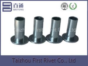 13-12 Zinc Blue Trivalent Semi Tubular Steel Rivet pictures & photos