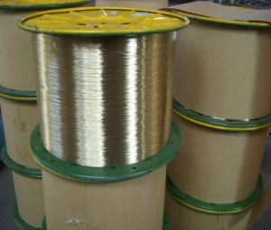 Brass Coated Stee Wire/Brass Coated Hose Wire pictures & photos