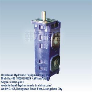 (CBGJ2063/1016) Excavator Hydraulic Double Fuel Gear Pump for Hitachi/Doosan pictures & photos