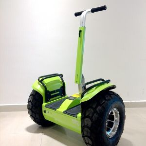 Wind Rover Cheap Electric Scooter Electric Chariot pictures & photos