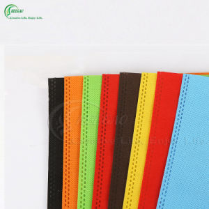 PP Non Woven Foldable Shopping Bag (KG-PN002) pictures & photos
