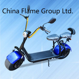 Two Wheel Smart Balance Electric Motorcycle with Real 1000W Motor pictures & photos