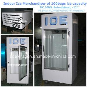 Indoor Ice Merchandiser DC-300g of 100bags Ice Capacity pictures & photos