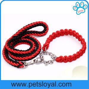 Amazon Ebay Hot Sale Nylon Pet Dog Harness Leash pictures & photos