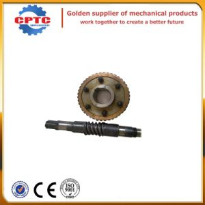 Construction Hoist Spare Parts Worm and Worm Wheel pictures & photos