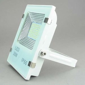 LED Flood Light LED Flood Lamp 30W Lfl1703 pictures & photos