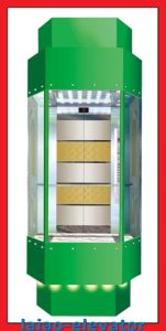 Panoramic Lift with Mirror Stainless Steel Ceiling with 1 Fan, LED Soft Lights pictures & photos