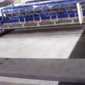 E Glass / C Glass Fiberglass Chopped Strand Mat for FRP Products, Boat Building, Auto Parts pictures & photos