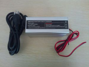36V-48V 2A NiMH NiCd Battery Charger pictures & photos