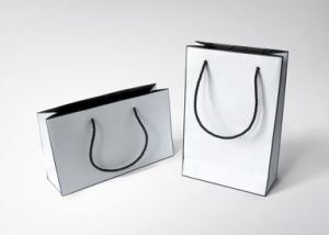China Paper Bags Factory/Promotional Gift Bags (FLP-8960) pictures & photos